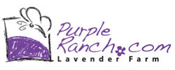 Purple Ranch